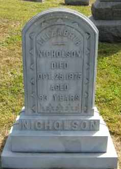 NICHOLSON, ELIZABETH - Meigs County, Ohio | ELIZABETH NICHOLSON - Ohio Gravestone Photos