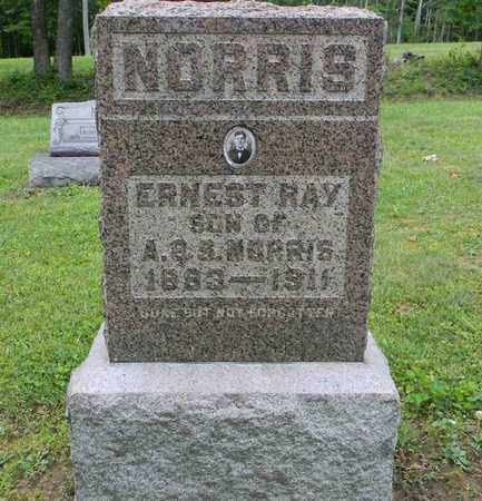 NORRIS, ERNEST RAY - Meigs County, Ohio | ERNEST RAY NORRIS - Ohio Gravestone Photos