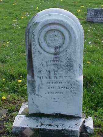 NYE, RHODA - Meigs County, Ohio | RHODA NYE - Ohio Gravestone Photos