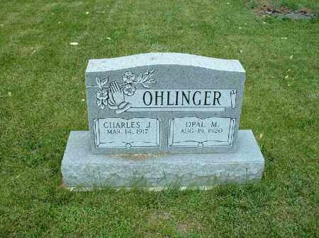 OHLINGER, OPAL M. - Meigs County, Ohio | OPAL M. OHLINGER - Ohio Gravestone Photos