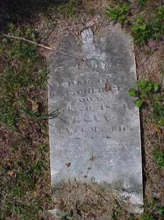 OHLINGER, MARY - Meigs County, Ohio   MARY OHLINGER - Ohio Gravestone Photos