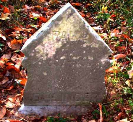 OHLINGER, PAUL - Meigs County, Ohio | PAUL OHLINGER - Ohio Gravestone Photos