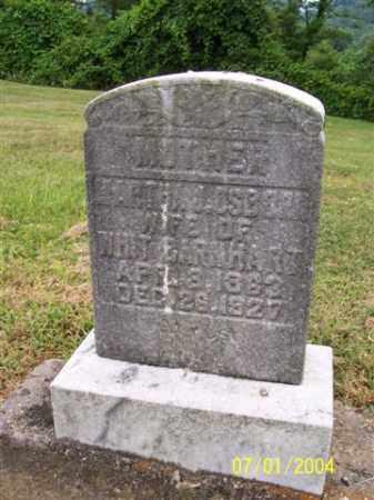 OSBORN, MARTHA - Meigs County, Ohio | MARTHA OSBORN - Ohio Gravestone Photos
