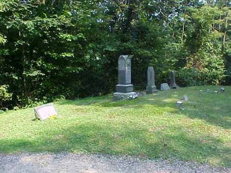 OVERVIEW, BEECH GROVE - Meigs County, Ohio | BEECH GROVE OVERVIEW - Ohio Gravestone Photos