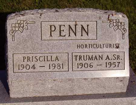 PENN, PRISCILLA - Meigs County, Ohio | PRISCILLA PENN - Ohio Gravestone Photos