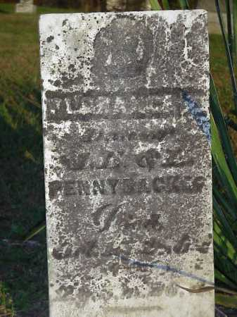 PENNYBACKER, FLORECNE E. - Meigs County, Ohio | FLORECNE E. PENNYBACKER - Ohio Gravestone Photos