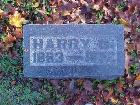 PEOPLES, HARRY C. - Meigs County, Ohio | HARRY C. PEOPLES - Ohio Gravestone Photos