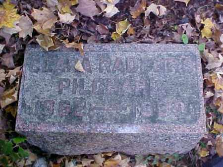 PILCHARD, CARA - Meigs County, Ohio | CARA PILCHARD - Ohio Gravestone Photos
