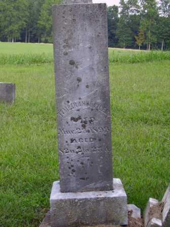 PILES, TEMPERANCE - Meigs County, Ohio | TEMPERANCE PILES - Ohio Gravestone Photos