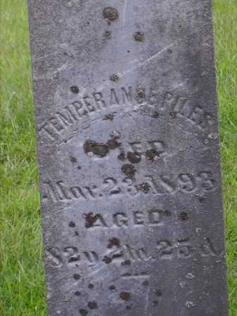 PILES, TEMPERANCE - Meigs County, Ohio | TEMPERANCE PILES - Ohio Gravestone Photos