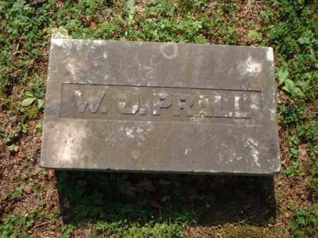 PRALL, W.J. - Meigs County, Ohio | W.J. PRALL - Ohio Gravestone Photos