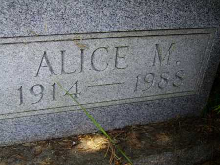 PRIDDY, ALICE M. - Meigs County, Ohio | ALICE M. PRIDDY - Ohio Gravestone Photos