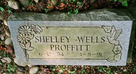 PROFFITT, SHELLEY - Meigs County, Ohio | SHELLEY PROFFITT - Ohio Gravestone Photos