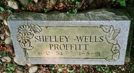 WELLS PROFFITT, SHELLEY - Meigs County, Ohio | SHELLEY WELLS PROFFITT - Ohio Gravestone Photos