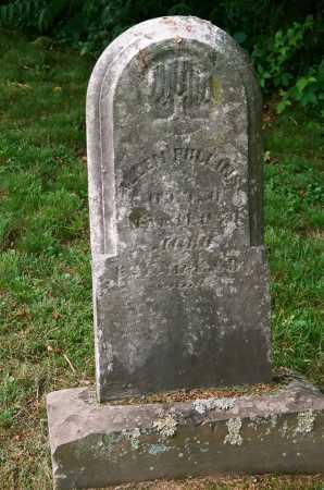PULLINS, ALLEN - Meigs County, Ohio | ALLEN PULLINS - Ohio Gravestone Photos