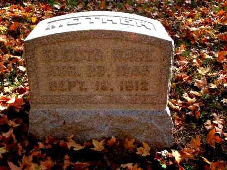 RACE, ELECTRA - Meigs County, Ohio | ELECTRA RACE - Ohio Gravestone Photos