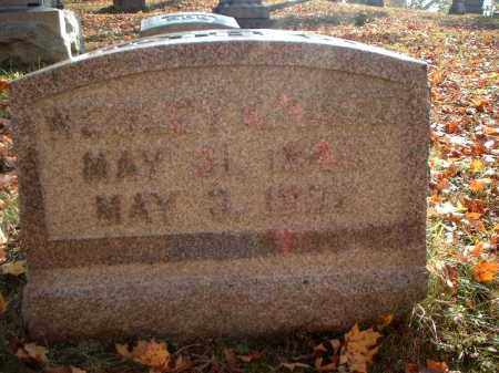 RACE, WESLEY R. - Meigs County, Ohio | WESLEY R. RACE - Ohio Gravestone Photos
