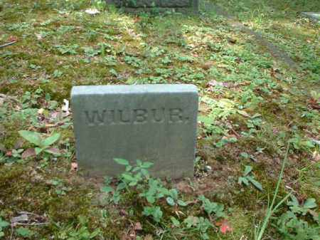 RADFORD, WILBUR - Meigs County, Ohio | WILBUR RADFORD - Ohio Gravestone Photos