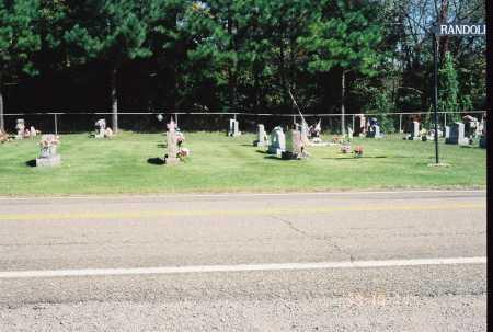 RANDOLPH OVERVIEW - #3, CEMETERY - Meigs County, Ohio   CEMETERY RANDOLPH OVERVIEW - #3 - Ohio Gravestone Photos