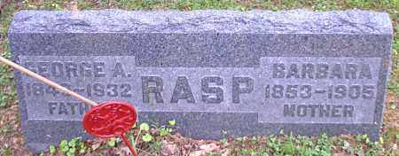 RASP, GEORGE A. - Meigs County, Ohio | GEORGE A. RASP - Ohio Gravestone Photos
