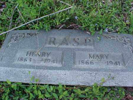RASP, MARY - Meigs County, Ohio | MARY RASP - Ohio Gravestone Photos