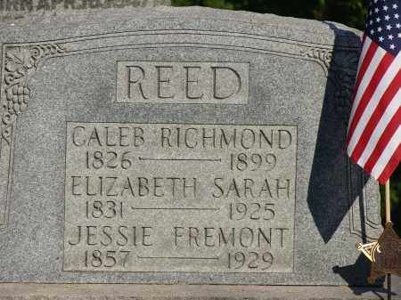 REED, ELIZABETH SARAH - Meigs County, Ohio | ELIZABETH SARAH REED - Ohio Gravestone Photos