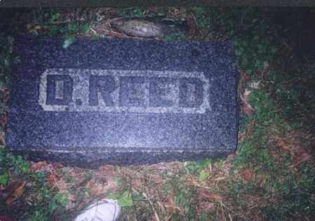 REED, D. - Meigs County, Ohio | D. REED - Ohio Gravestone Photos