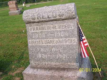 KNOWLES REED, AURELIA - Meigs County, Ohio | AURELIA KNOWLES REED - Ohio Gravestone Photos