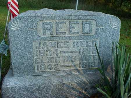 REED, JAMES STARLING - Meigs County, Ohio | JAMES STARLING REED - Ohio Gravestone Photos