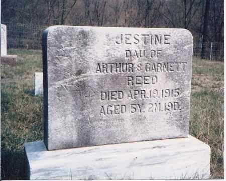 REED, JESTINE - Meigs County, Ohio | JESTINE REED - Ohio Gravestone Photos