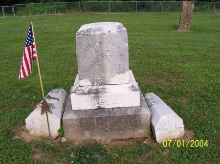 REED, MAJOR - Meigs County, Ohio | MAJOR REED - Ohio Gravestone Photos