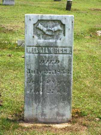 REED, WILLIAM - Meigs County, Ohio   WILLIAM REED - Ohio Gravestone Photos