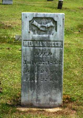 REED, WILLIAM - Meigs County, Ohio | WILLIAM REED - Ohio Gravestone Photos
