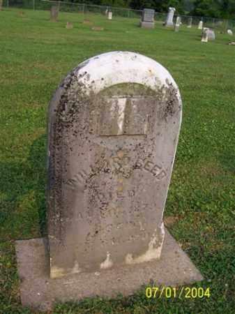 REED, WILLARD - Meigs County, Ohio | WILLARD REED - Ohio Gravestone Photos