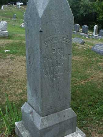 REES, DAVID - Meigs County, Ohio   DAVID REES - Ohio Gravestone Photos
