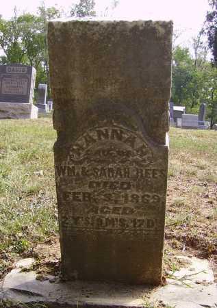 REES, HANNAH - Meigs County, Ohio | HANNAH REES - Ohio Gravestone Photos