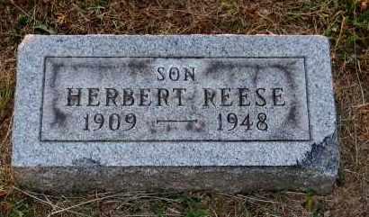 REESE, HERBERT - Meigs County, Ohio | HERBERT REESE - Ohio Gravestone Photos