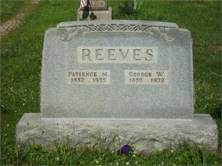 REEVES, GEORGE WASHINGTON - Meigs County, Ohio | GEORGE WASHINGTON REEVES - Ohio Gravestone Photos