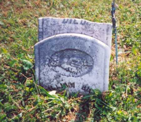 RIGGS, WILLIAM - Meigs County, Ohio | WILLIAM RIGGS - Ohio Gravestone Photos