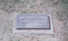 ROCKHOLD, DAISY - Meigs County, Ohio | DAISY ROCKHOLD - Ohio Gravestone Photos