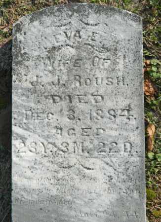ROUSH, EVA E. - Meigs County, Ohio | EVA E. ROUSH - Ohio Gravestone Photos
