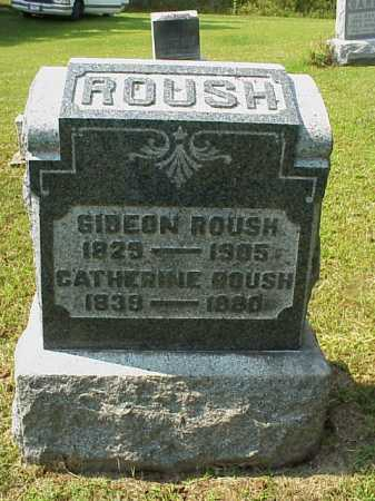 ROUSH, CATHERINE - Meigs County, Ohio | CATHERINE ROUSH - Ohio Gravestone Photos
