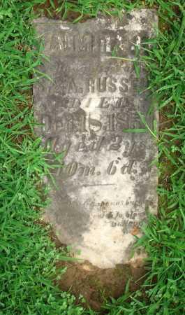 RUSSELL, ALMIRA J. - Meigs County, Ohio | ALMIRA J. RUSSELL - Ohio Gravestone Photos