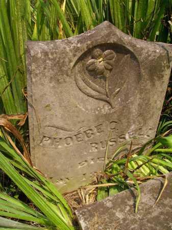 RUSSELL, PHOEBE C. - Meigs County, Ohio | PHOEBE C. RUSSELL - Ohio Gravestone Photos