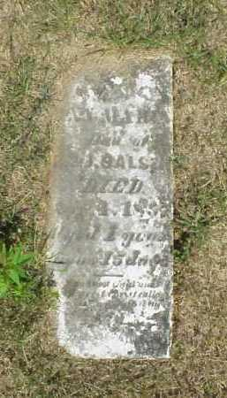 SALSER, ANNE MARIA - Meigs County, Ohio | ANNE MARIA SALSER - Ohio Gravestone Photos