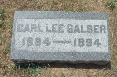 SALSER, CARL LEE - Meigs County, Ohio | CARL LEE SALSER - Ohio Gravestone Photos
