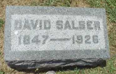 SALSER, DAVID - Meigs County, Ohio | DAVID SALSER - Ohio Gravestone Photos