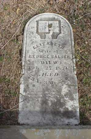SALSER, ELIZABETH - Meigs County, Ohio | ELIZABETH SALSER - Ohio Gravestone Photos
