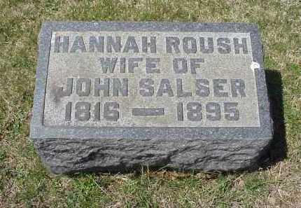 SALSER, HANNAH ROUSH - Meigs County, Ohio | HANNAH ROUSH SALSER - Ohio Gravestone Photos
