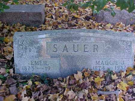 SAUER, EMEIL - Meigs County, Ohio | EMEIL SAUER - Ohio Gravestone Photos